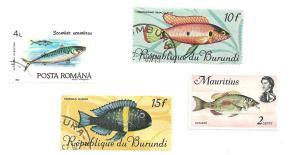 2peace fish