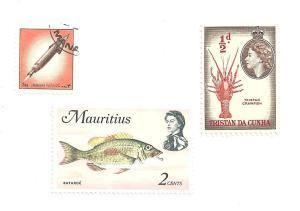 2pink fish