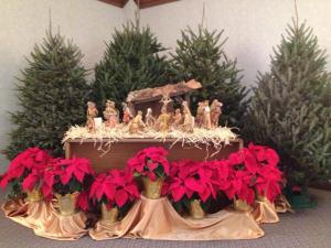 Mercy nativity1