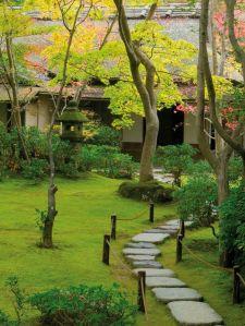 Garden detail, Kyoto, Honshu, Japan